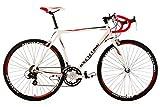 KS Cycling Fahrrad Rennrad Alu Euphoria RH 55 cm,...