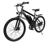 E-Bike Elektrofahrrad 'Futura' Pedelec E-Fahrrad...