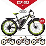 RICHBIT eBike RLH-022, E-Bike, 1000 W, 48 V, 17...