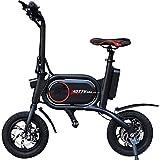 Trotty Bike Elektroroller Scooter (250 Watt, 24...