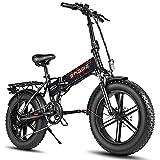 Fafrees E-Bike 750W Fat Tire Mountainbike 20 Zoll...