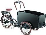 Elektro - Transportrad Voozer schwarz + gratis...
