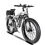 Etrbici XF800 E-Bike Mountainbike,750W/1500W 48V...