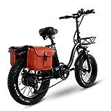 Y20 Ebike Klapprad 20 Zoll, Upgrade E-Bike Damen...