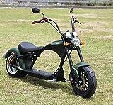 Motors, Viron Elektrisches Chopper Bike   Eine...