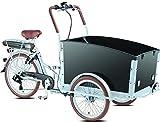 Elektro - Transportrad Voozer silber- schwarz +...