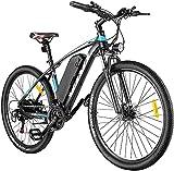 VIVI E-Bike Mountainbike, 26' Elektrofahrrad...