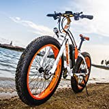 RICH BIT®RT-012 1000W E-Bike eBike Cruiser...